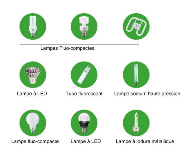 Recyclage des ampoules usagées - Haut Bugey Agglomération